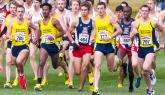Northern Arizona University Men Win NCAA XC Crown; Canadian Justin Knight wins Individual Title